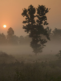 Kanha National Park, India Photographic Print by Jan & Stoney Edwards