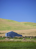 Palouse Farmland, Whitman County, Washington, USA Photographic Print by Jamie & Judy Wild