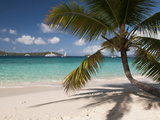 Tranquil White Sand Beach, St John, United States Virgin Islands, USA, US Virgin Islands, Caribbean Reproduction photographique par Trish Drury