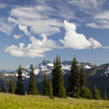 Alpine Meadow and Sarvent Glaciers, Mount Rainier National Park, Washington, USA Photographic Print by Jamie & Judy Wild