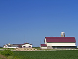 Farm and Soybean Crop North of Eau Claire, Wisconsin, USA, Wisconson Photographic Print by David R. Frazier