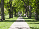 Students Walk in the Oval, Fort Collins, Colorado, USA Reproduction photographique par Trish Drury