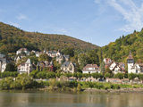 Houses on the North Side of Neckar River, Heidelberg, Germany Photographic Print by Michael DeFreitas
