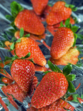 Fresh Strawberries, Italy Photographic Print by Nico Tondini