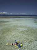 Snorkelers, Green Island, Great Barrier Reef Marine Park, North Queensland, Australia Photographic Print by David Wall