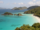 Underwater Snorkeling Trail, St John, United States Virgin Islands, USA, US Virgin Islands Photographic Print by Trish Drury