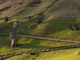 Rano Raraku, Rapa Nui, Easter Island, Chile Photographic Print by Sergio Pitamitz
