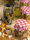 Mushrooms in Jar Preserved in Olive Oil, Italy Photographic Print by Nico Tondini