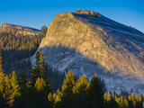 Lembert Dome in Evening Glow, Yosemite National Park, California, USA Photographic Print by Mark Williford