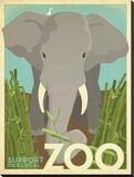 Zoo Elephant Stretched Canvas Print by  Anderson Design Group