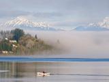 Rower with Fog Bank, Bainbridge Island, Washington, USA Reproduction photographique par Trish Drury