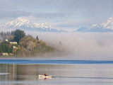 Rower with Fog Bank, Bainbridge Island, Washington, USA Photographic Print by Trish Drury