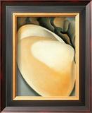 Tan Clam Shell Prints by Georgia O'Keeffe