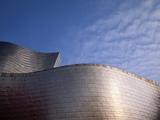 Spider Sculpture, the Guggenheim Museum, Bilbao, Spain Photographic Print by Walter Bibikow