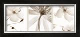 Sepia Floral Art