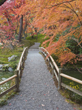 Sento Imperial Palace, Kyoto, Japan Photographic Print by Rob Tilley