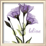 Gentian Believe Prints by Albert Koetsier