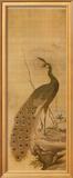 Peacock Posters by Yanagisawa Kien