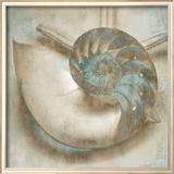 Coastal Gems IV Poster by John Seba
