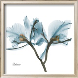 Orchids in Blue Print by Albert Koetsier