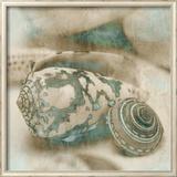 Coastal Gems I Art by John Seba