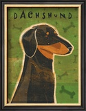 Dachshund Prints by John Golden