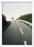 Autobahn Pig Poster by Michael Sowa