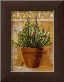 Rosemary Posters by Carol Elizabeth