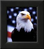 Courage: Eagle and Flag Posters