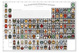 Cartoon Periodic Table Chart Educational Poster Posters by Zak Zych