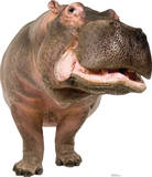 Hippopotamus Lifesize Standup Silhouette en carton