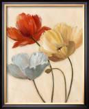Poppy Palette II Prints by  Nan