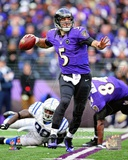 Joe Flacco 2012 Playoff Action Photo