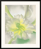 An Orchid, c.1942 Posters by Georgia O'Keeffe