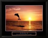 Goals: Dolphins Art by Craig Tuttle