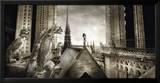 Gargouilles de Notre Dame, Paris Prints by Stephane Rey-Gorrez