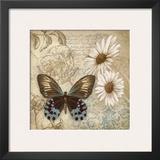 Butterfly Garden I Art by Conrad Knutsen