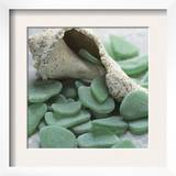 Sea Glass, Kelly Green Poster by Celia Pearson