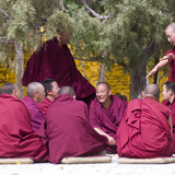 Tibetan Buddhist Monks Debating in Sera Monastery in Lhasa, Tibet, China, Asia Photographic Print by Nancy Brown