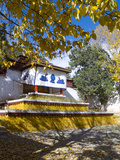 A Tibetan Buddhist Temple at the Sera Monastery in Lhasa, Tibet, China, Asia Photographic Print by Nancy Brown