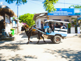 Cidomo, a Horse and Cart on Gili Trawangan, Gili Islands, Indonesia, Southeast Asia, Asia Fotografisk tryk af Matthew Williams-Ellis