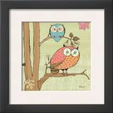 Pastel Owls I Prints by Paul Brent