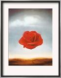 Rose Meditative, c.1958 Posters by Salvador Dalí