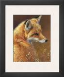 Curious: Red Fox Prints by Joni Johnson-godsy