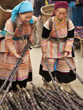 Flower Hmong Women Selecting Fresh Bamboo at Bac Ha Sunday Market, Bac Ha, Ha Giang, Vietnam Photographic Print by Lynn Gail