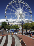 Ferris Wheel, the Waterfront, Cape Town, South Africa, Africa Photographic Print by Peter Groenendijk