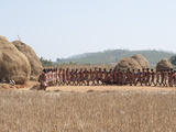 Tribal Dancing by Village Women Celebrating the Rice Harvest, Rural Orissa, India, Asia Photographic Print by Annie Owen