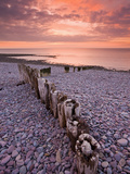 Weathered Wooden Coastal Defences on Bossington Beach, Exmoor National Park, Somerset, England, UK Photographic Print by Adam Burton