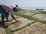 Fisherman Spreading Fish Catch in the Sun for Drying, Irrawaddy Delta, Myanmar (Burma), Asia Photographic Print by Eitan Simanor