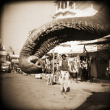 Elephant Trunk at Indian Bazaar Photographic Print by Theo Westenberger